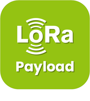 Lora Payload